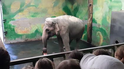Obiskali smo živalski vrt v Ljubljani